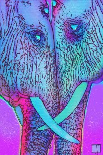 loving elephants-1287274540..jpg